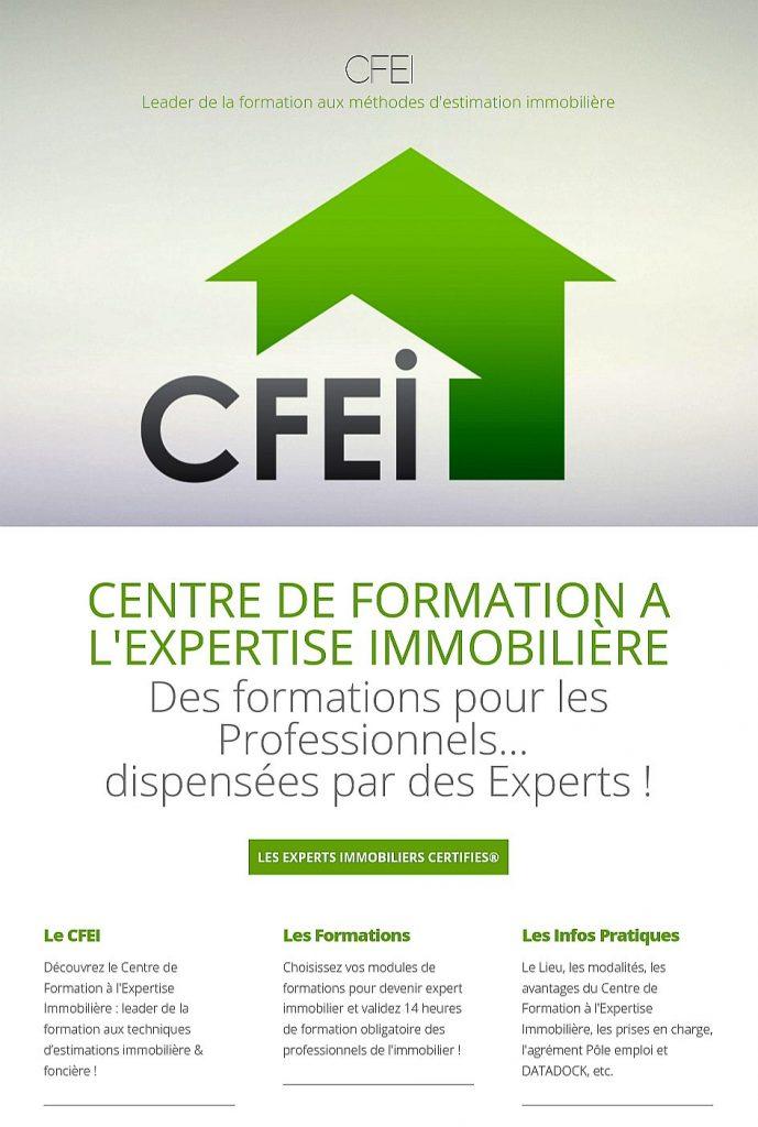 Accéder au site du CFEI : www.cfei.fr