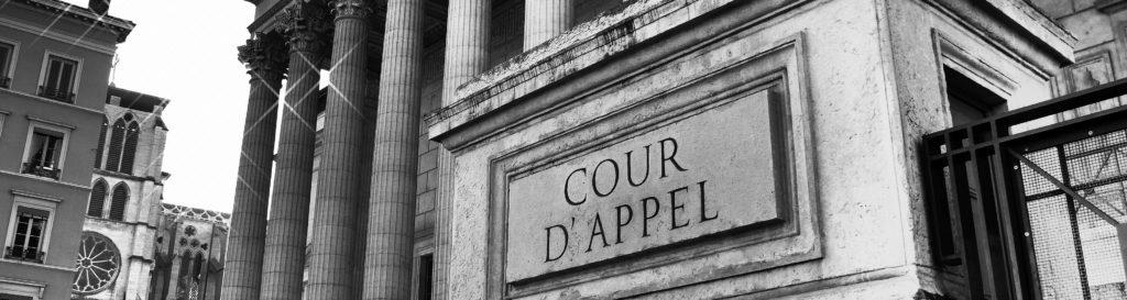 Le Cabinet IFC EXPERTISE FEVRE-REGUILLON expert en estimation immobilière près la cour d'appel de Lyon