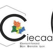 La Compagnie des experts de justice auprès de la Cour administrative d'appel de Lyon  – CIECAALY, inaugure son site Web.